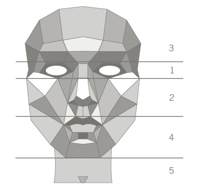 Skizze eines Gesichtes unterteilt in 5 Zonen: 1 Augen, 2 Nase Wangen Oberlippe, 3 Stirn, 4 Lippe Kinn, 5 Hals und Dekollete