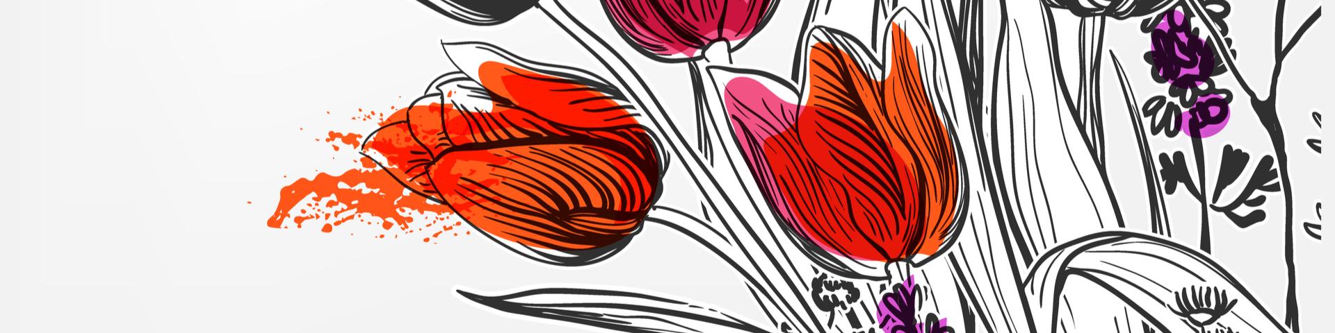 Tulpen gezeichnet zum Valentinstag